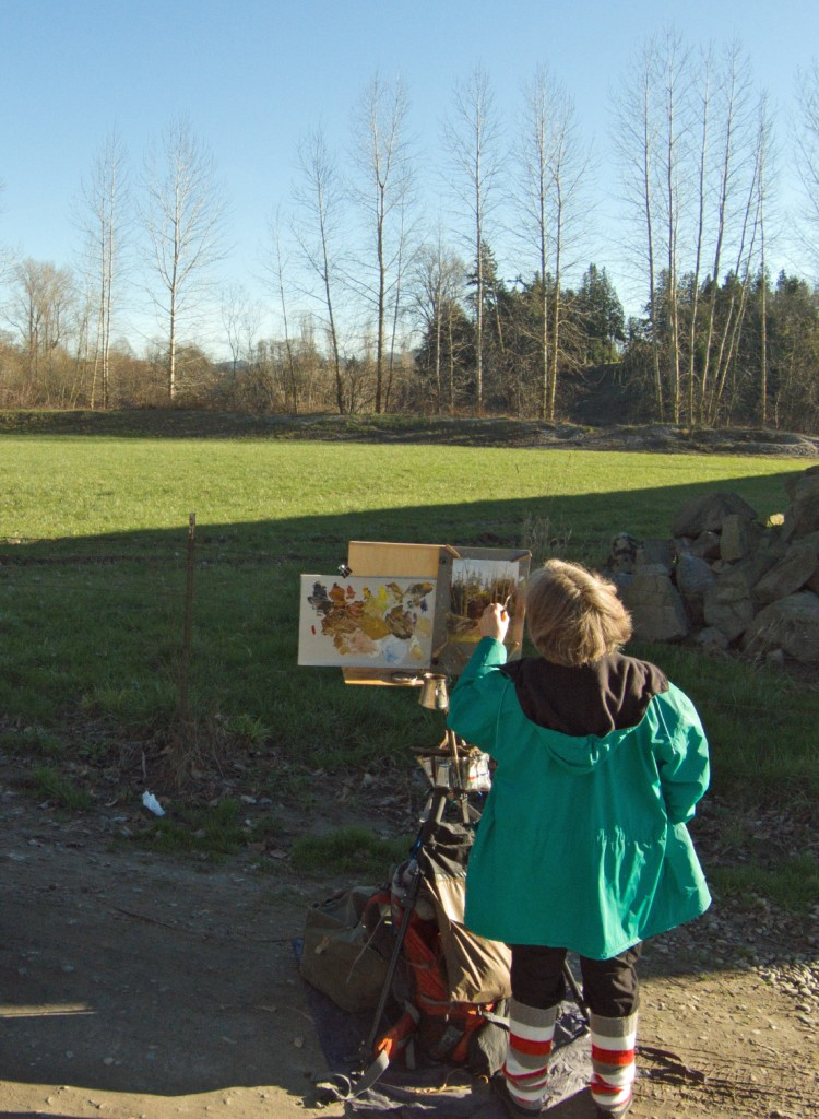 20150217_skagit_painter_b