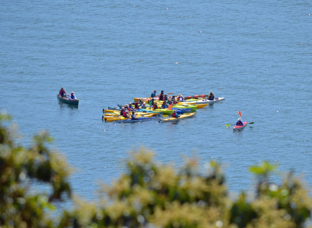 20160513_ana_protest_kayakers