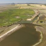 20160804_Fir Island Farm Estuary Restoration Project1