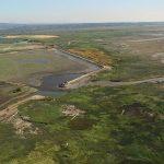 20160804_Fir Island Farm Estuary Restoration Project5